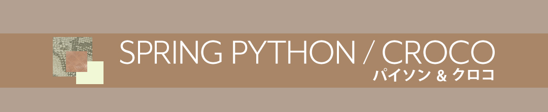 spring python / croco